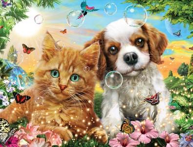 Kæledyr - pasning og pleje af kaniner katte hunde heste gnavere akvariefisk