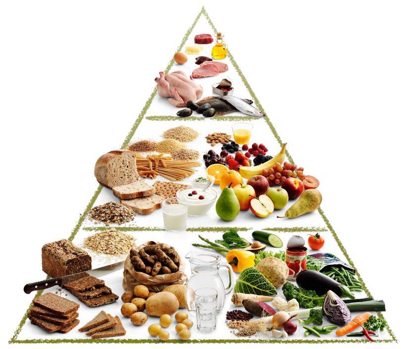 FDB's madpyramide fra 2011