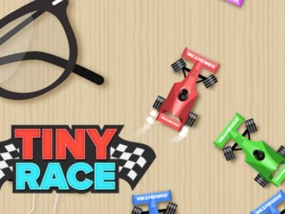 Tiny Race - Bilspil