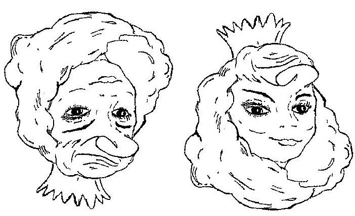 Illusioner - ung pige eller gammel kone?
