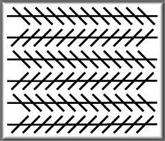 illusioner og synsbedrag